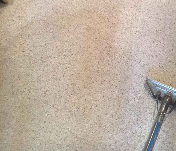 Berber carpet gets the full treatment Before