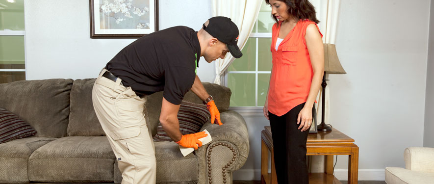 Milledgeville, GA carpet upholstery cleaning